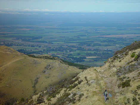 Tramper on Mt Oxford and Canterbury Plains