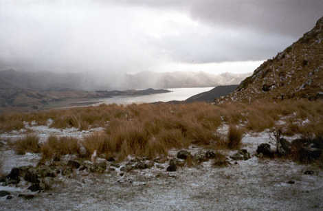 A winter storm-lashed Lyttelton Harbour at Packhorse Hut