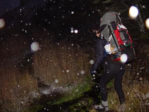 Dsc03093_snowing_on_the_walk_in_tp