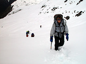 Honora_traversing_the_tops_tp