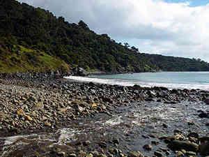 Stewart_island_lucky_beach_tp