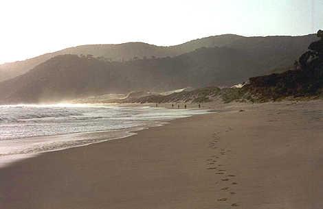 Stewart_island_smoky_beach_ltp